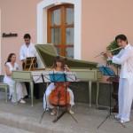 miradormusicians