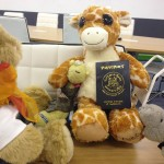 There's a travel agency for stuffed animals and it's not totally batshit
