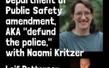 what does defund the police really ential?
